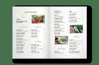 "Indojunkie - Rezeptbuch ""38 Indonesische Rezepte"""